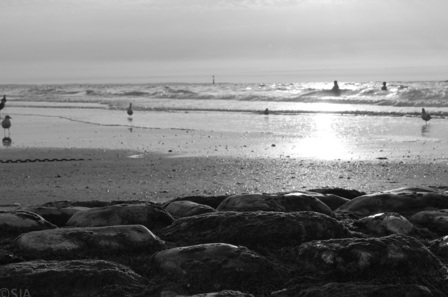 black-and-white-beach